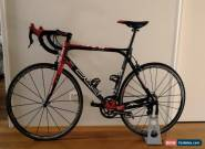 BMC Pro Machine 55cm (Large) With Campagnolo Chorus Groupset/Fulcrum Zero Wheels for Sale