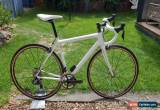 Classic Cannondale Supersix Evo Carbon Road Bike shimano ultegra di2 11 speed Mavic rsys for Sale