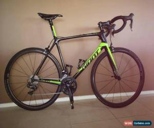 Classic Giant Advanced TCR SL1 2018 for Sale