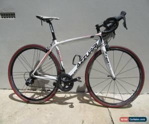 Classic Full carbon, full Ultegra Azzurri road bike - excellent condition for Sale