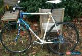 Classic Single speed road bike  for Sale