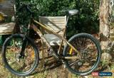 Classic Avanti Escape Mountain bike for Sale