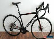 "FOCUS BIKE  IZALCO RACE ULTEGRA DISC S SIZE 51CM/20"" CARBON FRAME for Sale"