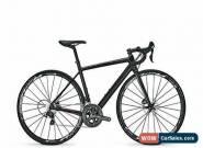 NEW 2017 Focus Cayo Disc Donna Ultegra 6800 48cm XS Carbon Endurance Road Bike for Sale