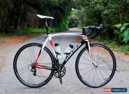 RARE Fully Italian Custom Road Bike Moser 666 Campagnolo Record for Sale
