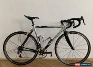 Pinarello Opera, Full Campagnolo Record, The Last Steel Frame, Carbon Forks for Sale