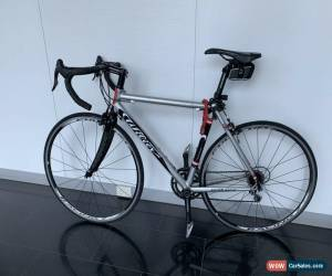 Classic Road Bike Wilier tristina Carbon Fibre  55cm Bicycle In Great Condition for Sale