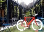 "NOLOGO ""X"" - Type RED new Single Speed freewheels Road bike Fixed Gear fixie ! for Sale"