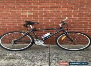7 Gear Konya Bicycle for Sale