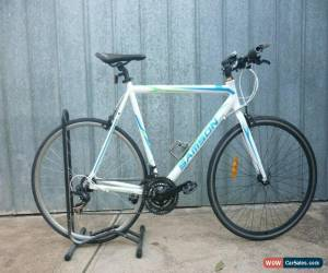 "Classic Male 700c Samson  ""Urban Seven"" 21sp Alloy Flat Bar Road Bike for Sale"