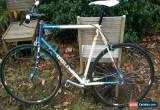 Classic Single speed road bike  for Sale