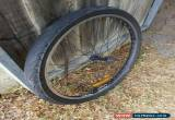 Classic Mountain Bike Front Wheel with Tyre 26 Inch Alexrims DM18 for Sale