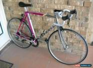**MYATA 14spd EXAGE 300EX 58cm FRAME, SPLINE TRIPLE BUTTED CHROMOLY ROAD BIKE** for Sale