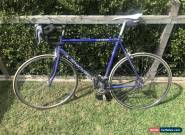 SHOGUN KATANA RACING ROAD BIKE, SHIMANO EXAGE, 56 Frame for Sale