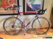 Colnago Masterlight - Custom Build In Classic Finishes for Sale