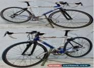 10speed COLNAGO ACTIVE Bike 47cm Columbus AIRPLANE Tubing Centaur Ambrosio for Sale
