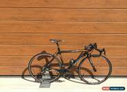 Wilier Le Roi Campagnolo Record 10 speed Fulcrum Racing 7 carbon bike bicycle for Sale