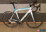 "Classic FOCUS BIKE CAYO 105 MIX M SIZE 54CM/21.2"" 2X11 105 GS CARBON for Sale"