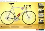 Classic Miguel  Indurain Pinarello Banesto original Tour bicycle 1994 Campagnolo  Record for Sale