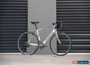 Specialized Roubaix Expert 56 for Sale