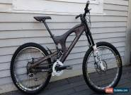 2007 Santa Cruz V10 Large Fox DHX Deemax Marzocchi Fork Downhill Mountain Bike for Sale