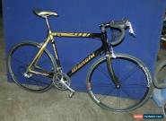 BIANCHI 928 FULL CARBON ITALIAN HAND MADE RACING BIKE 61 CM CAMPAGNOLO CENTAUR for Sale