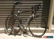 FOCUS CAYO EVO 2. Full Carbon. Zipp 30 Wheels. Ultegra Di2 - Large (56cm).  for Sale