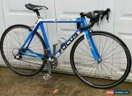 Focus Cayo Carbon fiber Road Bike 54cm for Sale