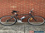 7 Gear Konya Bicycle for Sale