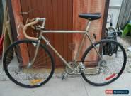 80s Vintage TREK 520 Reynolds 501 Bicycle ROAD BIKE 53cm Small Adult Frame for Sale