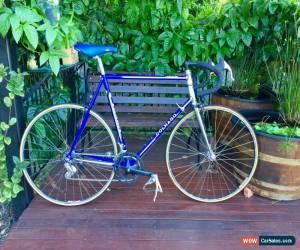 Classic Colnago Classic steel road bike for Sale