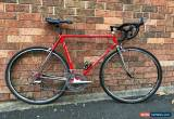 Classic Colnago Master Piu 55cm Square w/Dura-Ace  for Sale