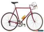 Eric Heiden's 1984 7-Eleven Murray Serotta Road Bike 60cm Steel Campagnolo 7-11 for Sale