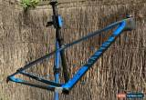 Classic 2019 Canyon Exceed CF SL Carbon 29er Frame for Sale