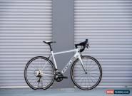 Focus Izalco Race 54cm for Sale