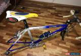 Classic Olmo Impact Bicycle Frame , Full Carbon Fork ,Campagnolo Veloce 9 speed Groupset for Sale