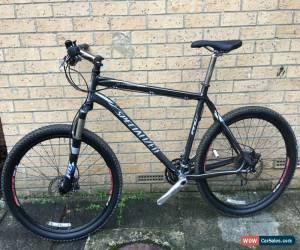 "Classic Specialized Stumpjumper Expert 21"" Mountain Bike XXL Fox-Avid-Deore-Sram for Sale"