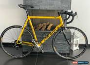 Concorde road bike campagnolo mavic ksyrium  for Sale