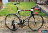 Classic Pinarello Dogma 2 Carbon Road Bike Campagnolo Super Record Eps  for Sale