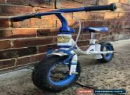 WeeRide First Balance Bike for Sale
