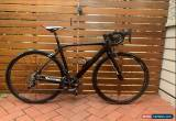 Classic carbon road bike / Shimano Ultegra / Cell Omeo /  for Sale