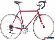 USED 1994 Specialized Allez Comp 50cm Lugged Steel Road Bike Shimano 600 2x8 for Sale