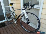 Giant Defy medium for Sale