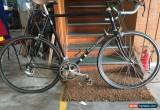 Classic Reynolds 653 25`` Campagnolo Racer Bike.  for Sale