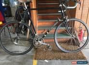 Reynolds 653 25`` Campagnolo Racer Bike.  for Sale