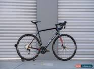 Focus Paralane 56cm 2018 for Sale