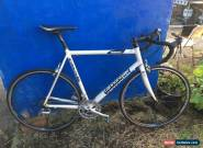 Classic Cannondale 2002 Caad 5 R900 56sq for Sale