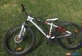 Classic hasa mountain bike for Sale