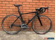 Giant TCR 01 carbon fibre race bike triathlon cycling roadrace dura-ace fulcrum5 for Sale
