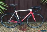 Classic RIDLEY Helium 56m (medium) - Brisbane Continental Cycling Team Colours for Sale